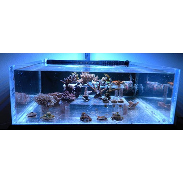 light led for freshwater fish plant marine aquarium coral grow lights